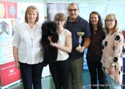 Salon pielegnacji i strzyzenia psow Groomil - konkurs 13
