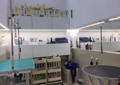 Salon pielegnacji i strzyzenia psow Groomil - nowa lokalziacja Bielany 01